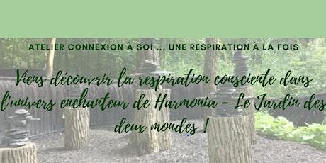 ESSENCE DU SOUFFLE :  respiration consciente / Marie-Josée Bonaldo billets