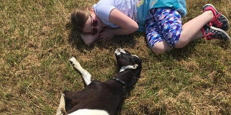 NamastHay Goat Yoga: Strange Roots Edition - Goatie Meet & Greet Only tickets