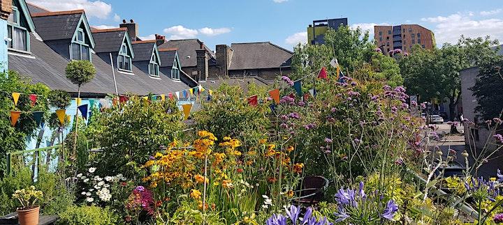 Community Garden and Planting Design masterclass with TV gardener Mark Lane image