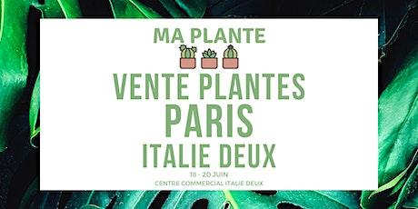 Vente Plantes Paris Italie Deux | Ma Plante billets
