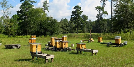 Introduction to Keeping Honeybees tickets