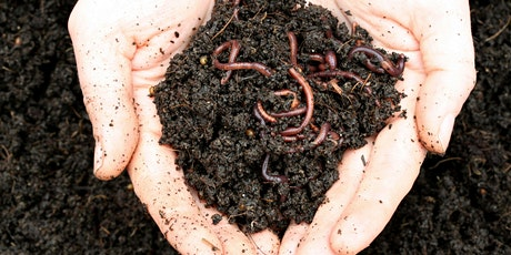 Workshop: Worm Composting - how to start your own worm farm tickets