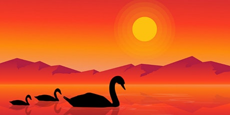 60min Learn to Draw a Scenery: Swan Silhouette @1PM  (Ages 6+) tickets