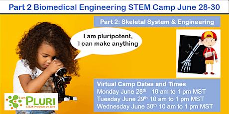 Part 2 Skeletal System & Biomedical engineering virtual STEM summer camp tickets