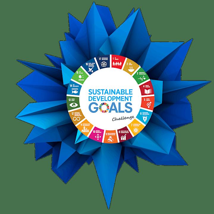 Sustainable Development Goals Challenge - STARTxsneep: Bild