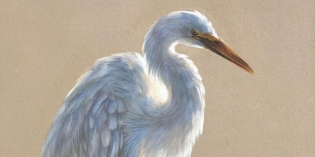 Egret in the Sunset in Pastel Pencils tickets