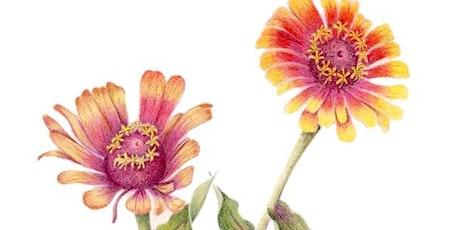 Drawing Sun- Flowers tickets