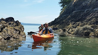 Oysters on the Beach Kayaking Tour tickets