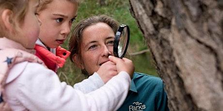 Junior Rangers Nature Treasure Hunt - Creswick Regional Park tickets