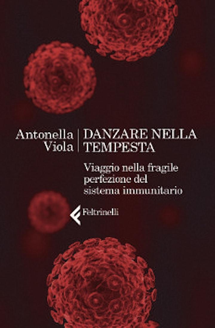 Immagine Antonella Viola