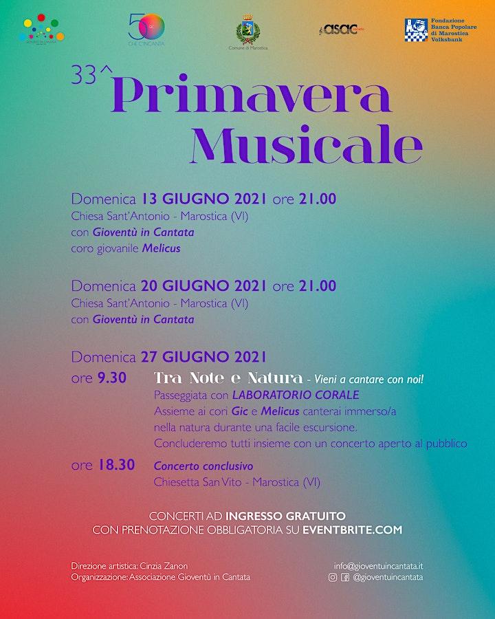 Immagine Primavera Musicale 2021 - Marostica (VI)