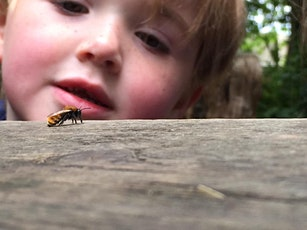 Parent & Toddler Nature Session tickets