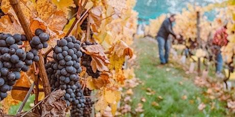 Seminario:Planes de apoyo al sector vitivinícola frente al cambio climático entradas