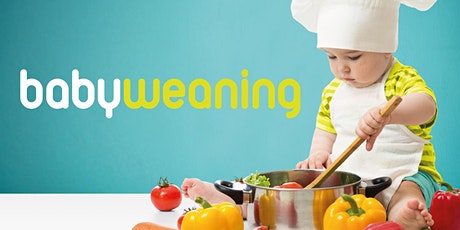 Baby Weaning Zoom Workshop - Introducing Solids tickets