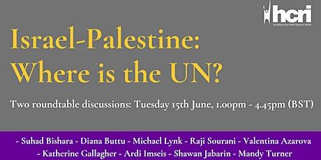 Israel-Palestine: Where is the UN? biglietti