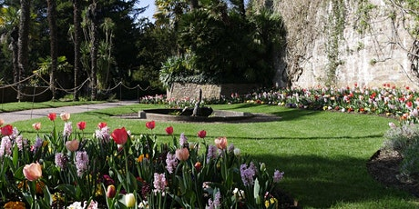 Timed entry to Dunster Castle and Watermill (14 June - 20 June) tickets