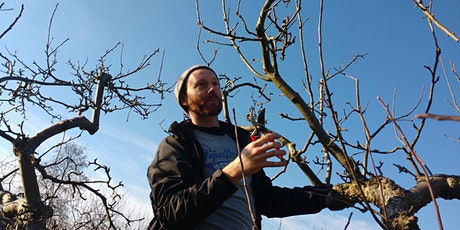 Weekend Course Series: Resilient &  Healthy Orchards tickets