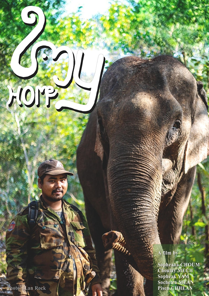 Elephant conservation and indigenous experiences in Cambodia image