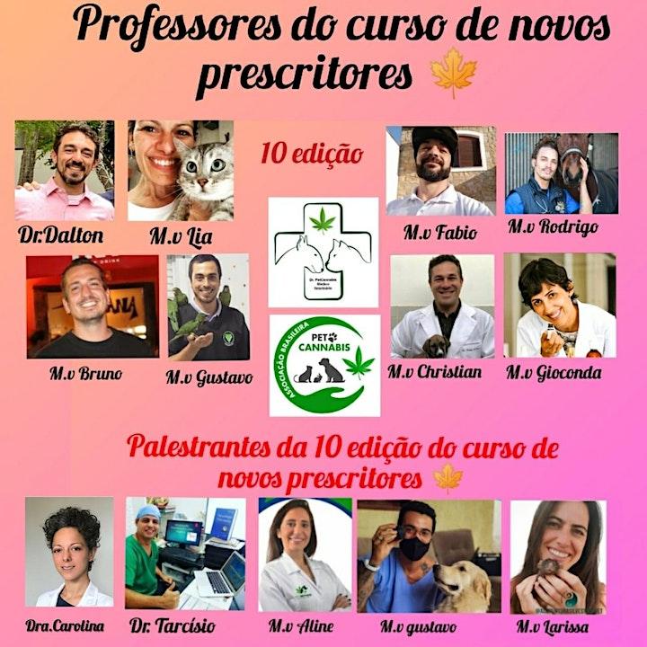 Imagem do evento Curso de Canabinologia na Medicina Veterinária