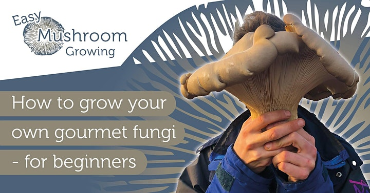 Easy Mushroom Growing: How to grow your own gourmet fungi - for beginners image