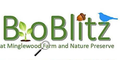 Fall BioBlitz at Minglewood tickets