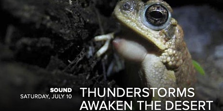 Sound: Thunderstorms Awaken the Desert tickets