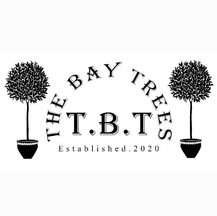 Mini Day Festival! Clara Vale Outdoor Gigs with food from The Bay Trees image