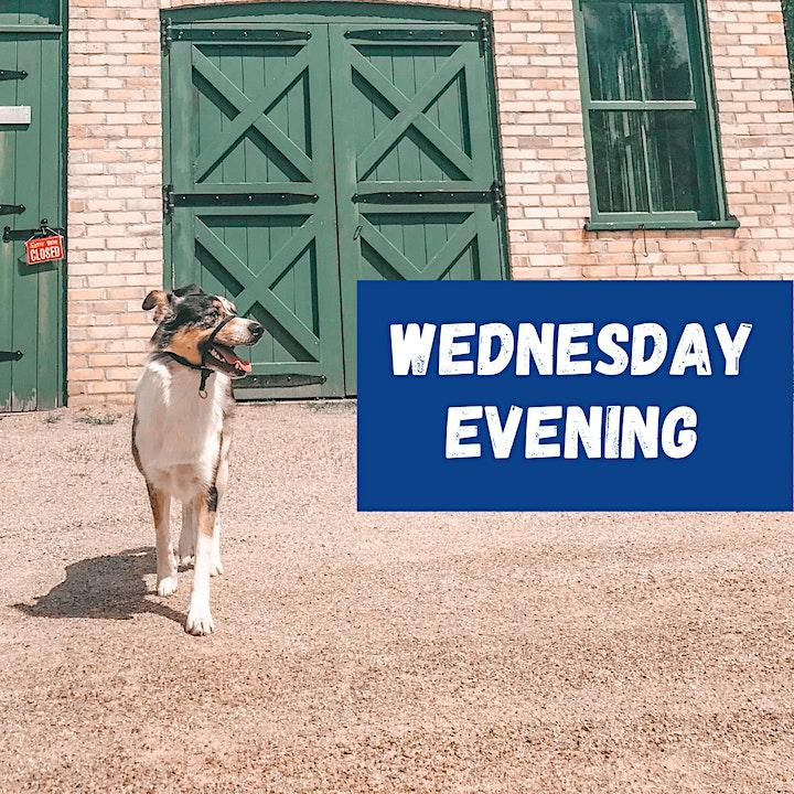 Ken Seiling Waterloo Region Museum Presents: Dog Day at Doon image
