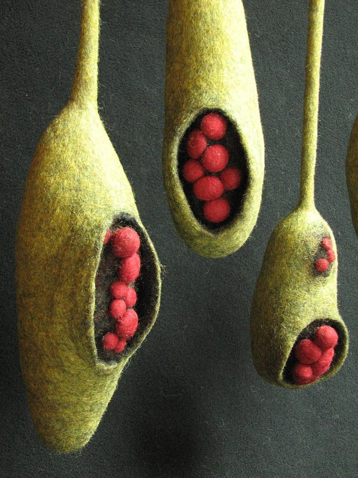 Pods: Solid Felted Form in 3 Dimension - 2 day workshop with Andrea Graham image