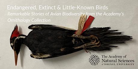 Endangered, Extinct & Little-Known Birds of the Academy tickets