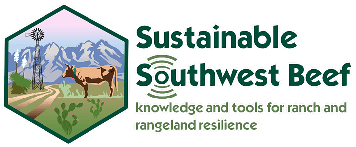 Sustainability Programs in Beef Supply Chains from Pasture to Plate image
