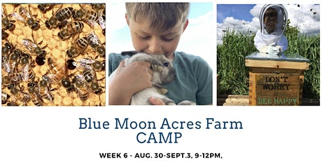 BLUE MOON ACRES CAMP WK 6 - AUG.30 -SEPT 3. Bees & Bunnies, Lip Balm & more tickets