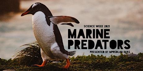Marine Predators: Immersive underground marine science experience tickets