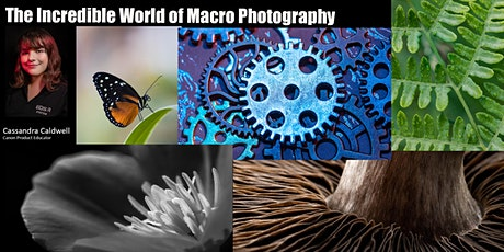 The Incredible World of Macro Photography with Canon - Live Online tickets