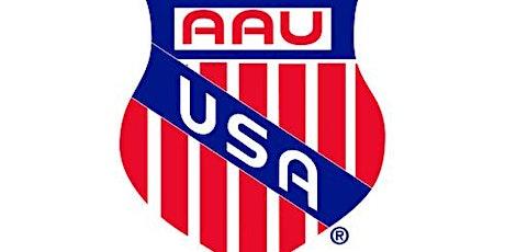 Copy of 2021 AAU Region 4 National Qualifier Multi-Day Ticket tickets
