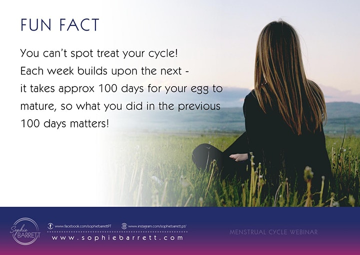 Women's Hormones + Sync your Cycle image