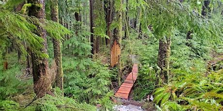 Fairy Creek Ancient Forests Benefit: Outdoor Dance w headphones tickets