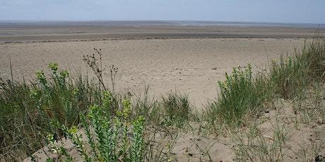 Mindfulness on the Coast: Berrow Dunes tickets