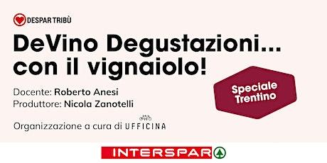 DeVino Degustazioni... con il vignaiolo!  Speciale Trentino biglietti