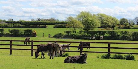 Open Farm tickets tickets