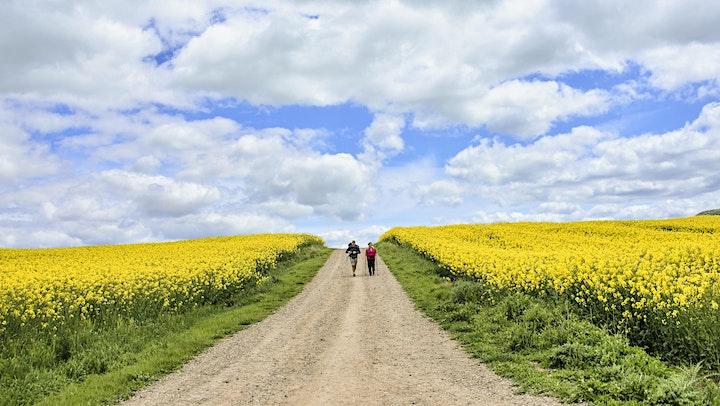 Follow The Camino Training Walk - Portmarnock to Howth Loop image