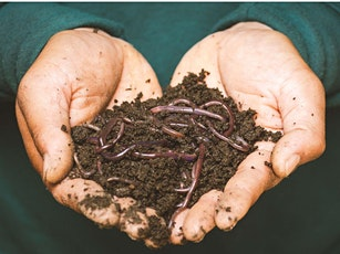 Worm Composting Workshop/Taller de Compostaje de Lombrices tickets
