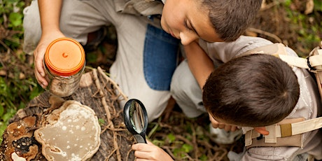 Summer Day Camp: Adventures in Nature tickets