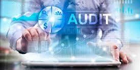 Auditorías Remotas: Requisitos y factores de éxito entradas
