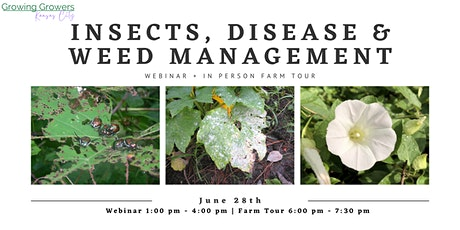 Insects, Disease & Weed Management Workshop tickets