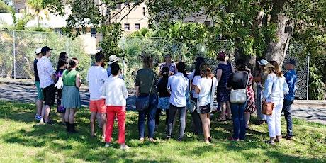 Edible weeds foraging walk tickets