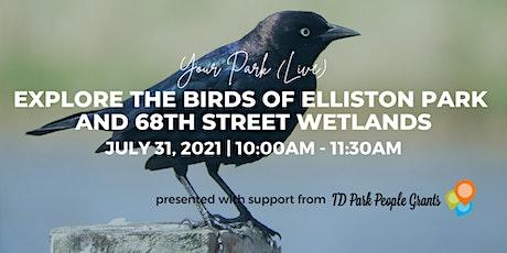 Your Park (Live!) Beyond the Birds at International Ave - Birding Walk tickets