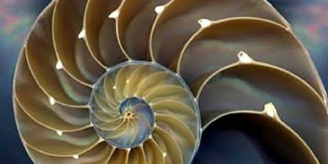 Sacred Geometry 1 - Creating Sustainable Living & Working Environments tickets