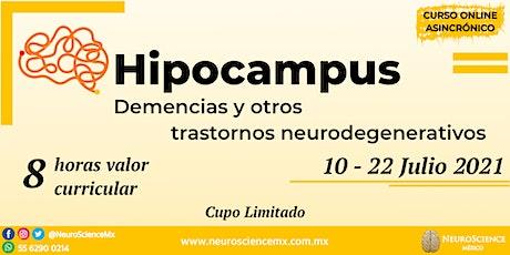 Hipocampus: Demencias y otros trastornos neurodegenerativos entradas