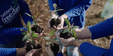 National Tree Day - Tree Planting Event tickets